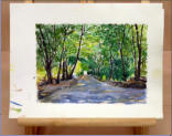 Water colour. The long avenue of trees with the sun-light breaking through just had to be sketched. Image = 245 x 175 mm (9.65 x 6.88 inches) approx.